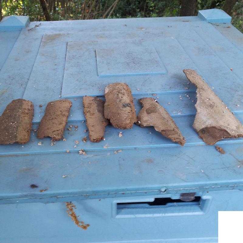 Tuiles de calcaire
